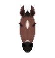 horse head in pixel art style vector image