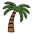 isolated palm tree vector image vector image