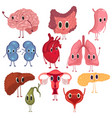 set cute and funny healthy human organ vector image