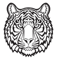 Tiger head isolated vector image vector image