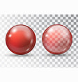 transparent red ball vector image vector image