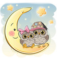 two cute owls on the moon vector image vector image
