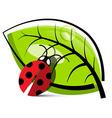Ladybug with Leaf Isolated on White Background vector image