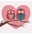 colorful with two owls in love sitting on a vector image vector image