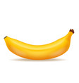 good tasty banana realistic 3d food icon design vector image vector image