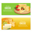 realistic cheeses horizontal banners vector image vector image