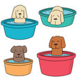 set of dog bath vector image