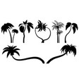 set tropical palm trees with leaves mature and vector image