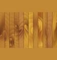vertical wooden texture vector image
