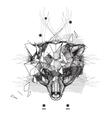 Animal bear head triangular icon vector image