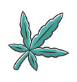 cannabis leaf color icon weed product ganja vector image