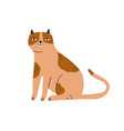 cute smiling cat sitting funny kitty with happy vector image vector image