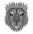 Doodle Lion head vector image vector image
