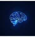 human brain neon sign vector image