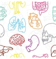 Human organs seamless pattern vector image vector image