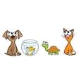 Nice pets vector image