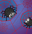 Spider funny