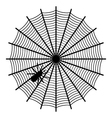 spider on a web vector image vector image