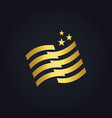 stripe flag star gold logo vector image