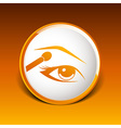 with beautiful female eyes with different makeup vector image vector image