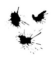 set of black ink drops and splashes vector image