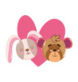cute cartoon animal adorable little monkey and vector image vector image
