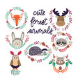 cute forest elements animals and plants vector image vector image