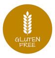 gluten free label food intolerance symbols vector image