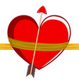 heart shape wrapped with a cupid arrow vector image