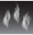 Smoke waves transparent vector image