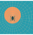 Big dark spider on the web vector image vector image