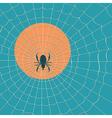 big dark spider on web vector image vector image