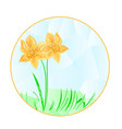 button the circular easter daffodil polygons vector image vector image