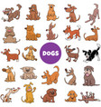 cartoon dogs and puppies large set vector image vector image