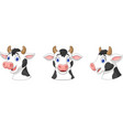 collection head cow vector image vector image