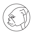 Head of breed dog bulldog vector image