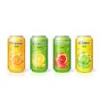 soft drink citrus lemon orange lime grapefruit vector image