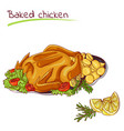 baked chicken with potatoes vector image