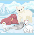 cartoon arctic animals with ice field background vector image vector image