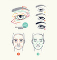 clean stylish linear eye makeup themed diagrams vector image