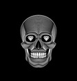 graphic print of stylized skull on black vector image vector image