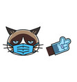 grumpy cat in medical face protection mask vector image vector image