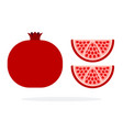 whole fruit pomegranate and two pomegranate vector image