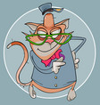 cartoon funny cat in clothes and glasses with a vector image vector image