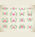 elegant pink ornament set vector image