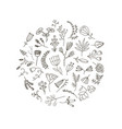 floral and herbal set graphic collection vector image