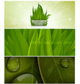 grass nature banner for facebook design vector image vector image