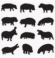 hippo silhouettes vector image vector image