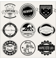 set retro labels for design vector image
