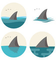 shark fin with flying seagulls vector image